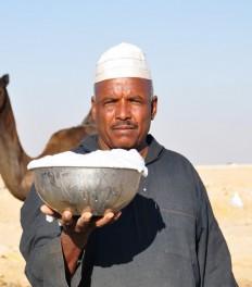 Буклет: верблюжье молоко